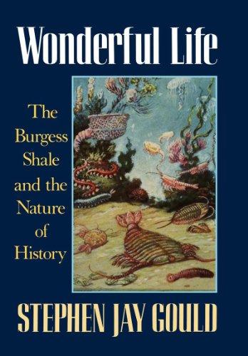 Wonderful_Life_(first_edition)